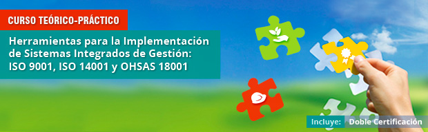 curso sistemas integrados de gestion
